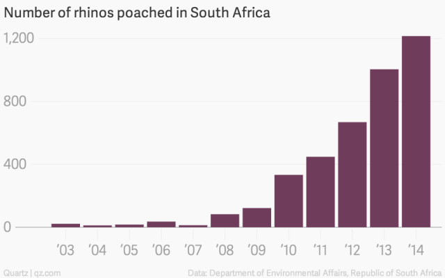 number-of-rhinos-poached-in-south-africa-rhinos-killed_chartbuilder1